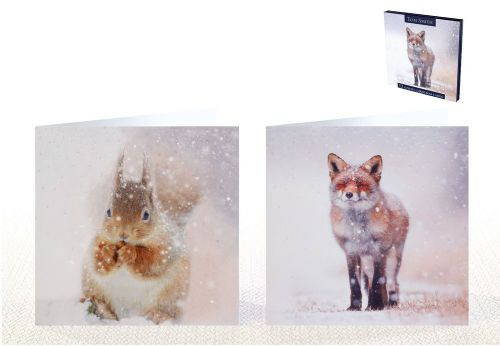 12 Luxury Christmas Cards Snow